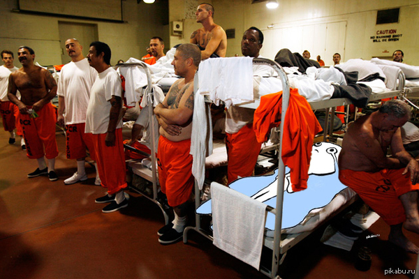 prison colonies as solution for prison overpopulation essay Even if cost savings were substantial, prison privatization is intrinsically incompatible with the supposed goals of the us prison system private prisons have few incentives to pursue.