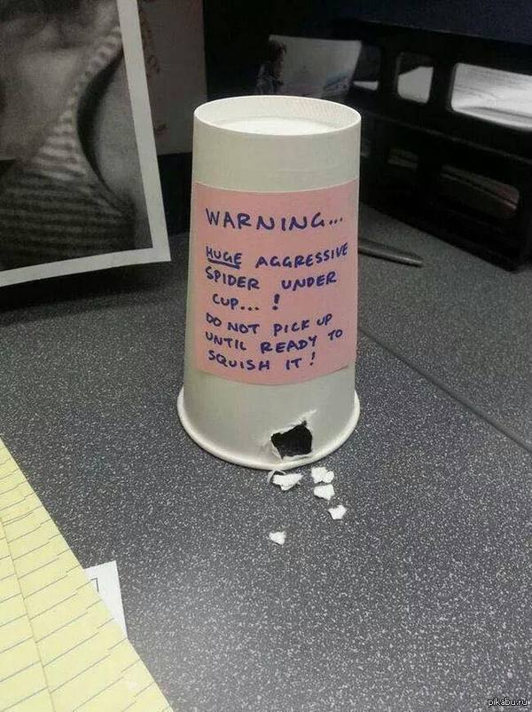 A Collection of Easy Office Pranks  Instructables