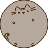 Аватар пользователя naytanightingale