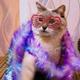 Аватар пользователя Arbuzova