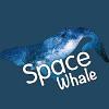 Аватар пользователя SpaceWhaleSci