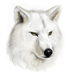 Аватар пользователя Vzon