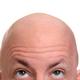 Аватар пользователя boblob
