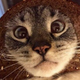 Аватар пользователя ValterFrai