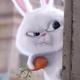 Аватар пользователя Veganmama