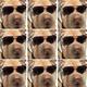 Аватар пользователя DadEx