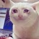 Аватар пользователя waylove