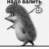 Аватар пользователя EjikVTumane73