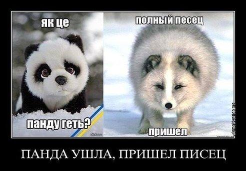 Украина прошла экономическое дно полтора года назад, сейчас идет ранний экономический рост, - Абромавичус - Цензор.НЕТ 5169