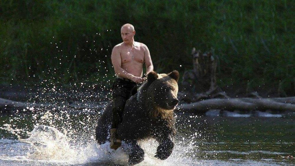 Картинки по запросу Путина на коне