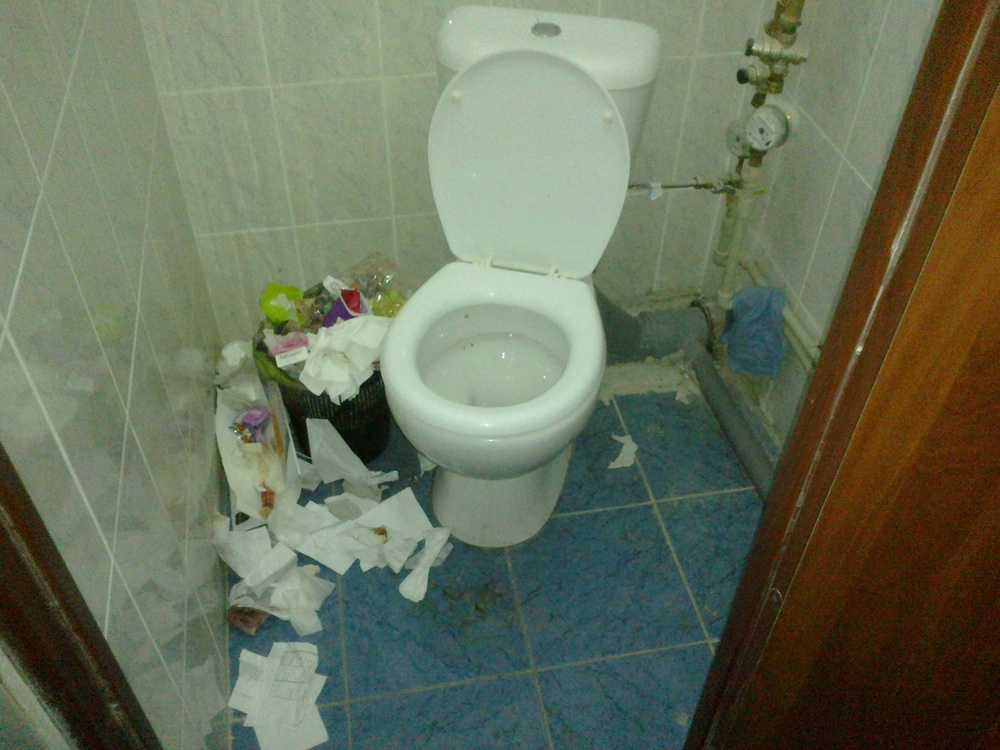 Срут в общественном туалете