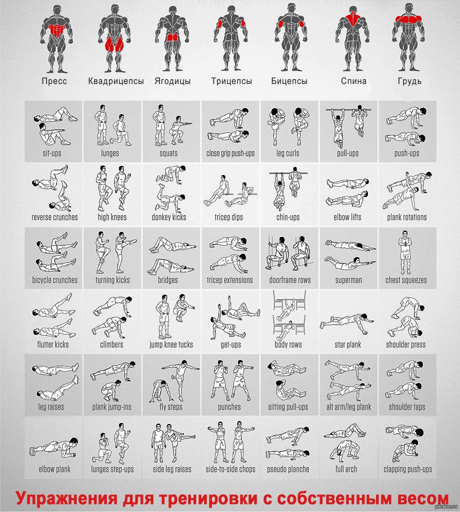 Образец Заполнения Анкета физического лица Лукойл Гарант