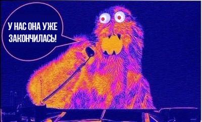 https://cs5.pikabu.ru/images/previews_comm/2014-12_5/14195404667520.png