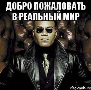 https://cs5.pikabu.ru/images/previews_comm/2015-08_6/1440916707173294102.jpg