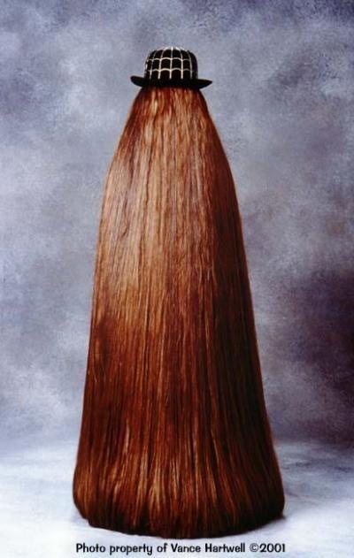 Волосатая семейка адамс