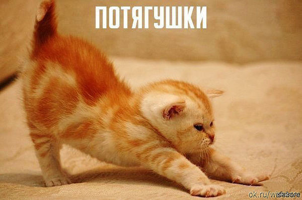 http://cs5.pikabu.ru/post_img/2014/03/22/4/1395463298_2028065712.jpg