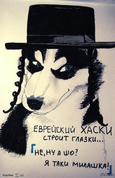 Таки хаски :)