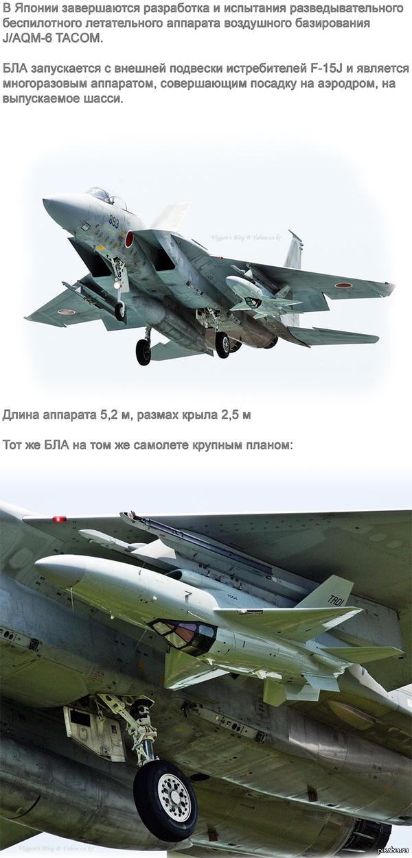 Японский БЛА Кстати, он похож на маленький f-16 с: