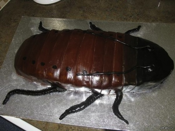 Коллеги по работе сделали сестре подарок на ДР сестра энтомолог, а на фото торт