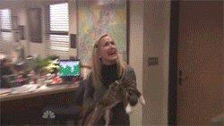 Достали котики на пикабу!))