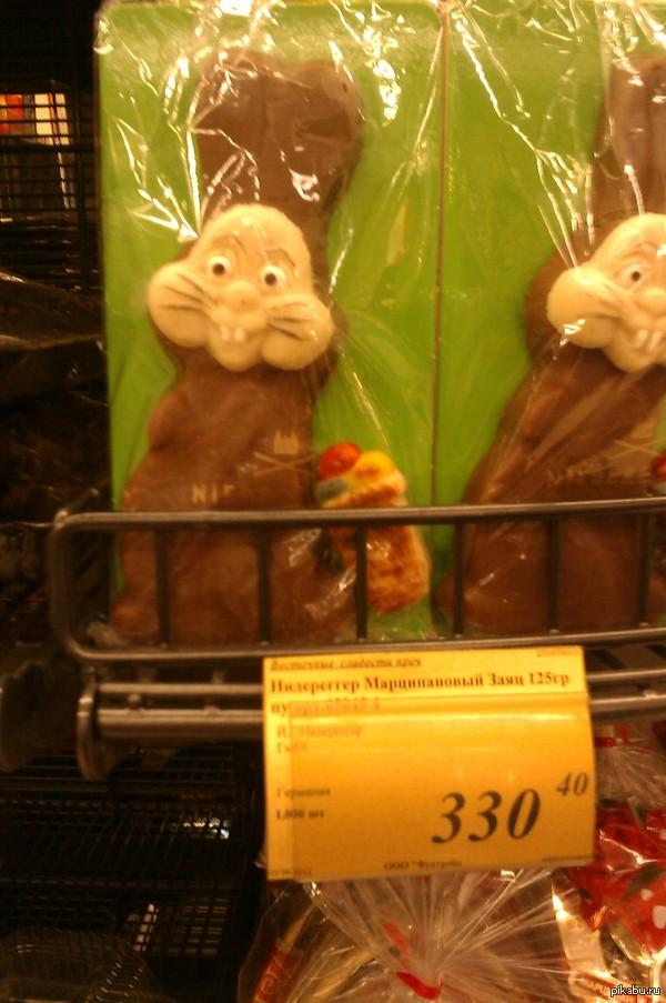 Этис-атис-аниматис Встретила его, когда гуляла по продуктовому. Боюсь, взгляд этих шоколадных глаз мне никогда не забыть...