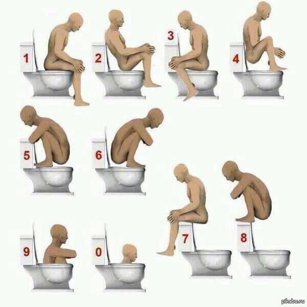 Камасутра в туалете