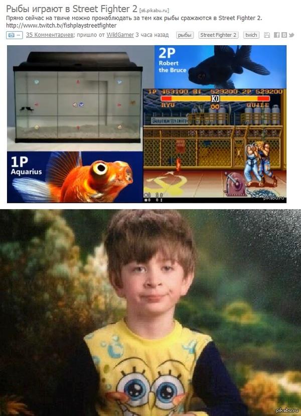 Тот самый момент... ...когда рыбы играют лучше тебя.
