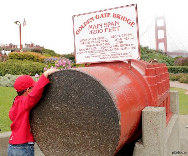 Сечение основного троса моста Золотые Ворота. Мост Золотые Ворота был самым большим висячим мостом в мире с момента открытия в 1937 г. и до 1964 г. Общая длина моста 2737 м, длина основного пролёта 1280.