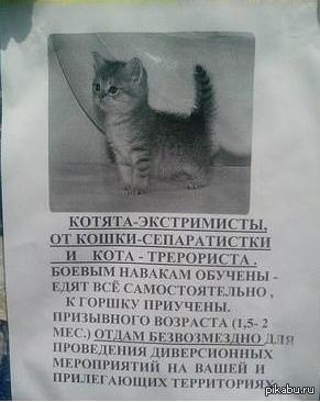 Донбасское обявление.
