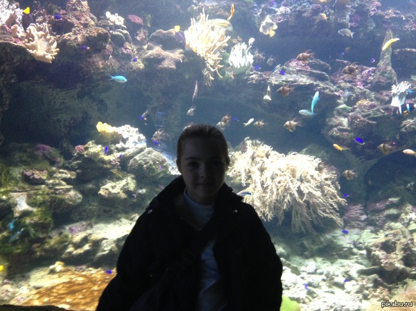 океанариум в Рио