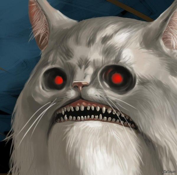 Вот вам няшный котик.