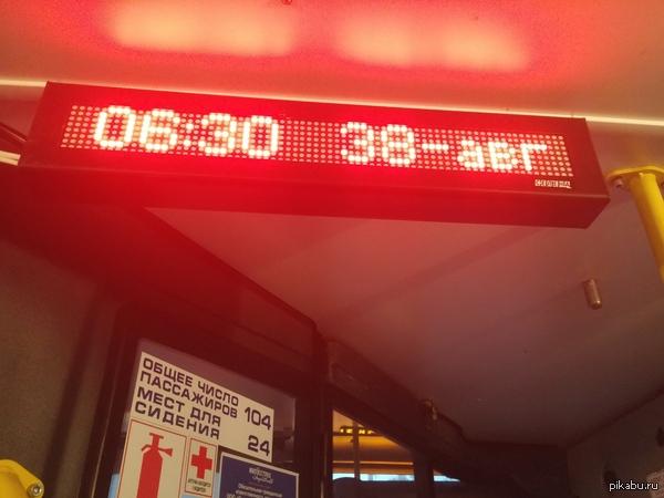 А лето ведь еще не кончилось! Никакого фотошопа, такое чудо ездит в Петербурге по 185му маршруту.