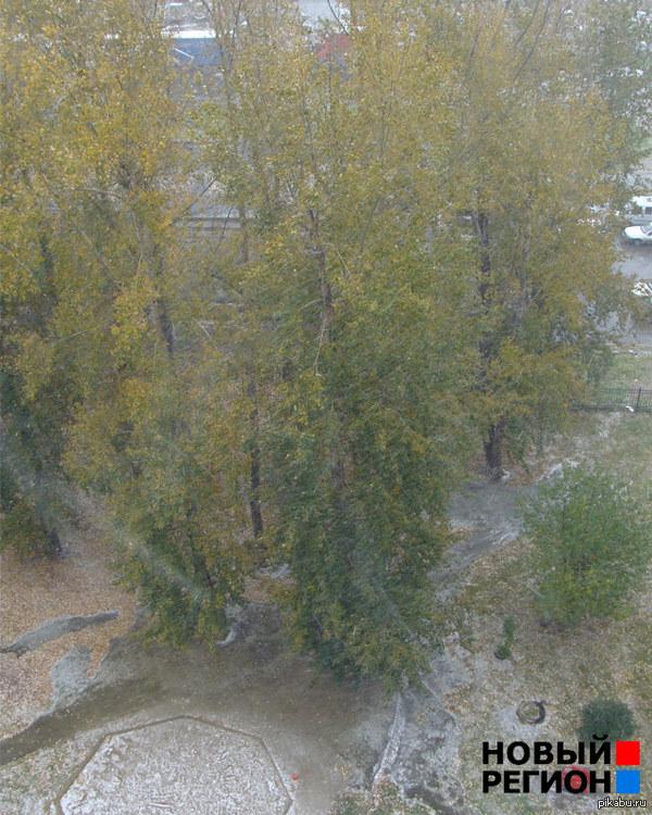 Погода класс. Сегодня, то есть 17 сентября 2014 года в Екатеринбурге выпал сильный снег, а после него град, день назад у нас было бабье лето. Это Екатеринбург детка !