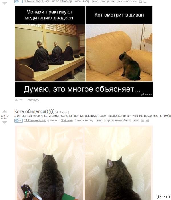 "Друже, не парься, он просто медитирует с: ответ к <a href=""http://pikabu.ru/story/kotye_obidelsya_2663893"">http://pikabu.ru/story/_2663893</a>"
