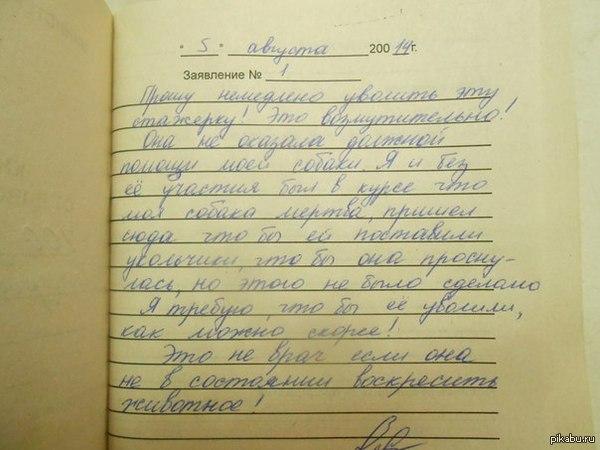 Ветеринарная практика. описание в комментариях.