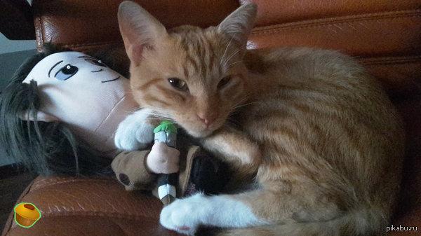 """Мистер Зло захватил 11 Доктора кот мой и доктор мой - в поддержку пятничного """"мое"""""""