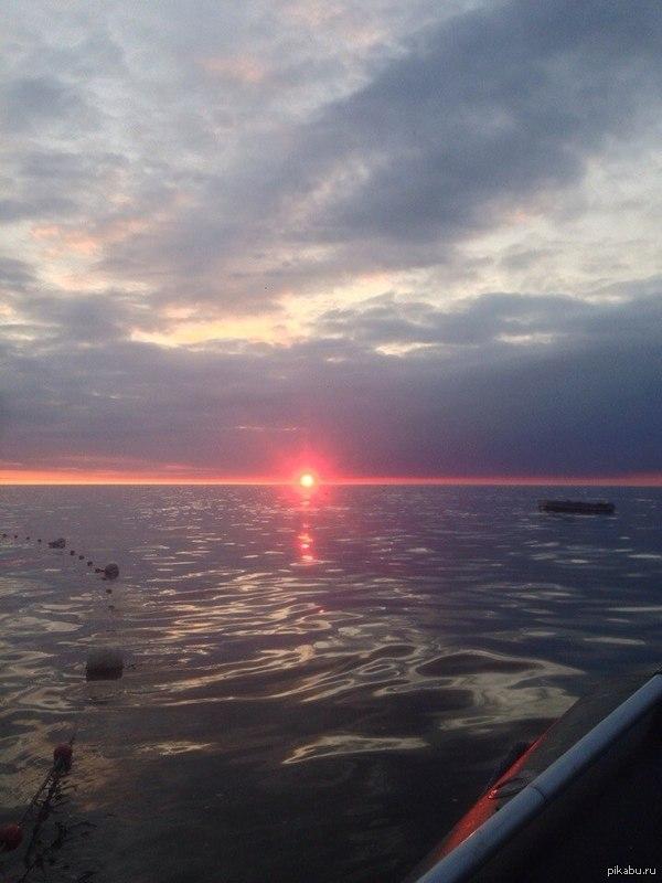 Фото с рабочего места. Браконьерил на охотском море в конце этого лета. Лютый отпуск получился!