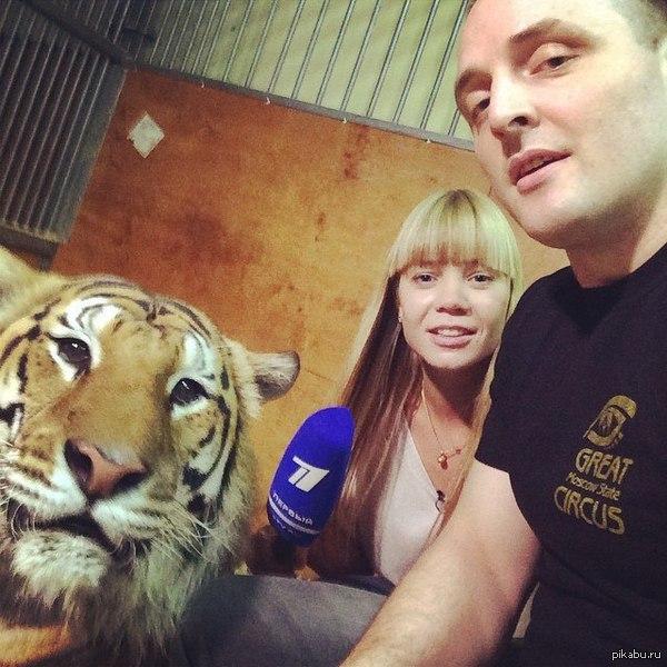 Ооо!! По телевизору покажут!! (с) Тигр он явно не ожидал столько внимания