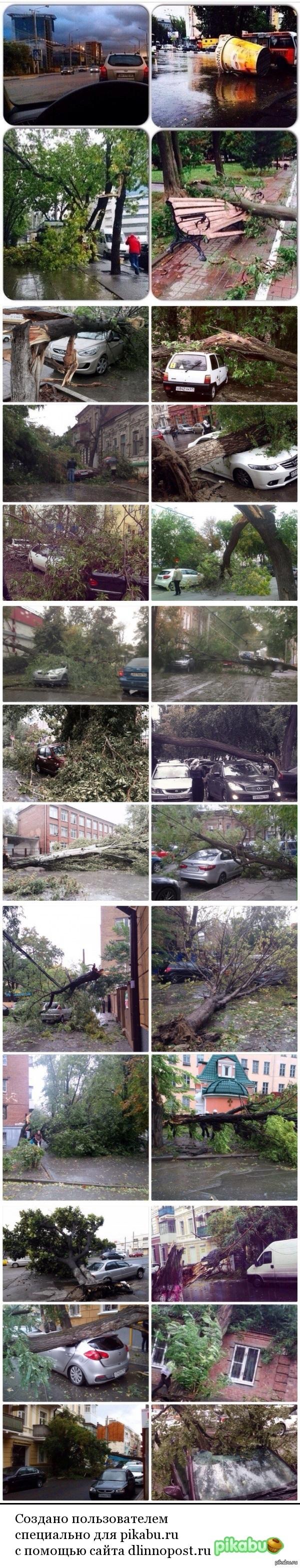 Ураган в Ростове-на-Дону куча деревьев вырваны с корнями!