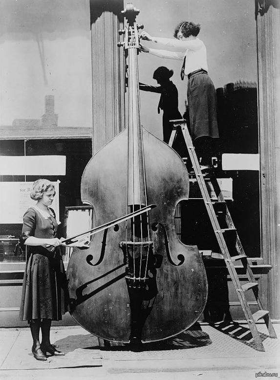 Просто октобас. Типичный инструмент Вагнера.