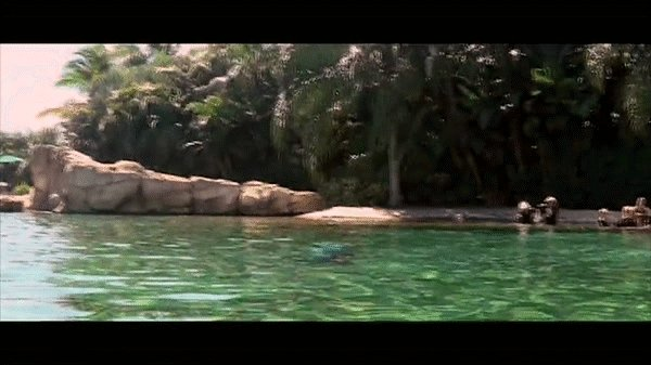 Прыжок дельфина.