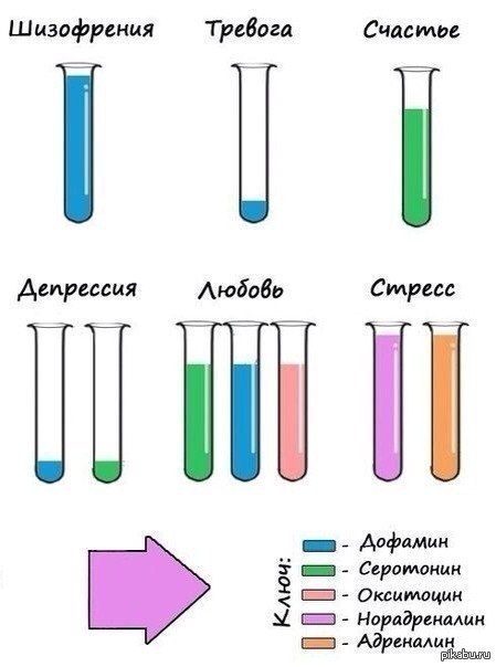 Химия, химия...