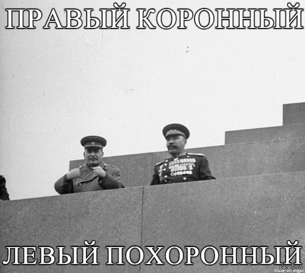 Сталин научит Сфоткай, типа меня боятся
