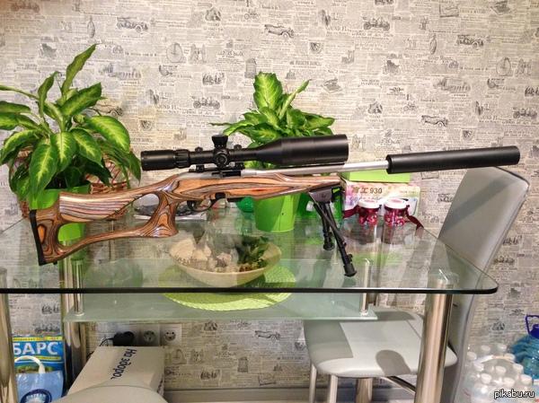 моя Няша :) Remington 597 .22LR