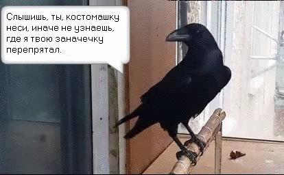 "Борзый ворон. В ответ на пост <a href=""http://pikabu.ru/story/_2746823"">http://pikabu.ru/story/_2746823</a>"