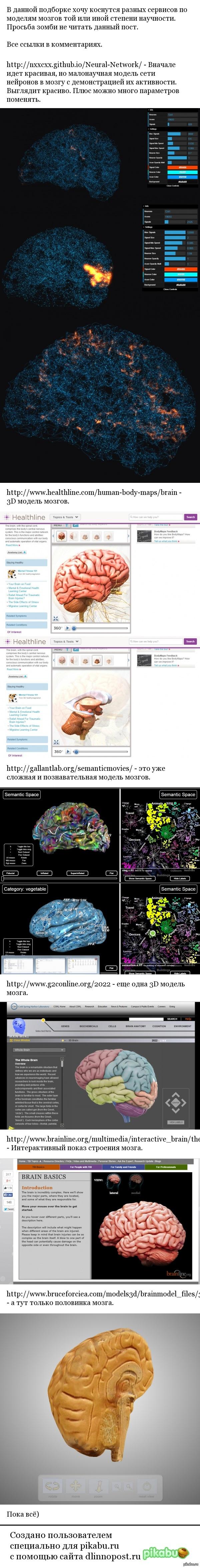 Подборка №18 сервисов В этой подборке рассмотрим сервисы по мозгам...