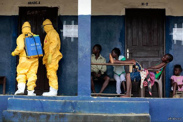 Вирус Эбола. Меня поражает спокойствие людей. Смерть рядом, а они абсолютно невозмутимы.
