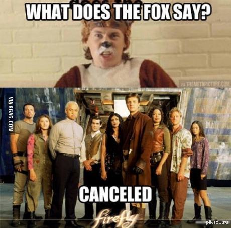What does the fox say 9gag