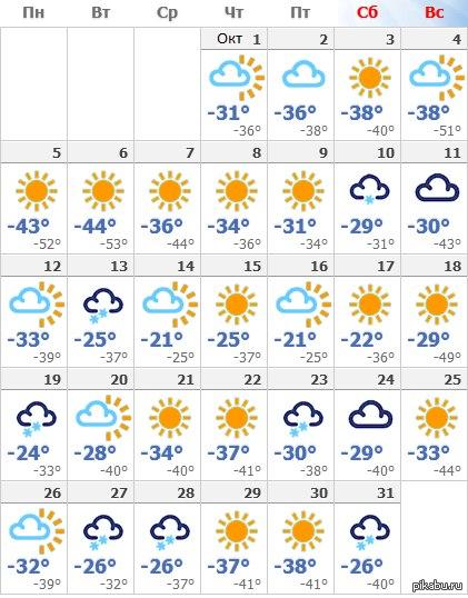 А вы ещё жалуетесь на первый снег