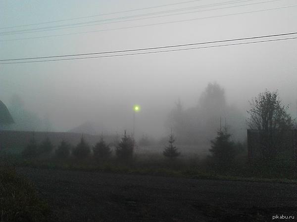 Вот такой зловещий туман Давно собиралась выложить. Лен обл.